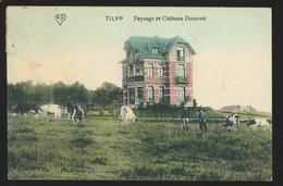 +++ CPA - TILFF - Paysage Et Château Dumont   // - Esneux
