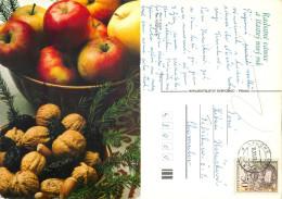 Christmas, Czech Republic Postcard Posted 1981 Stamp - Czech Republic