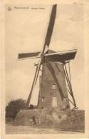 Rijckevorsel  /  Rijkevorsel : Stenen Molen - Rijkevorsel