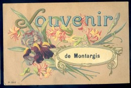 Cpa Du 45 Souvenir De Montargis --      JIP17 - Montargis
