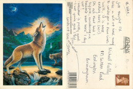 Howard Robinson, Wolves, Art Painting Postcard Posted 1992 Stamp - Paintings