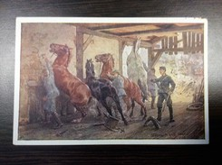 MILITARIA   MILITARY    RED CROSS  OFFIZIELLE ROTES KREUZ   HORSE  PFERDE - Rotes Kreuz