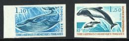 1977  Rorqual Bleu Baleine, Dauphins De Commerson  Yv 64-5   Non-dentelé  **   MNH - Imperforates, Proofs & Errors