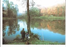 Etang Du Donnenbach (Frohmuhl-La Petite Pierre-Bas-Rhin-Alsace)-Pêcheur à La Ligne-Citation De René Clair-le Lac ... - La Petite Pierre