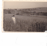 25807 Belgique -  Bourseigne Neuve -photo 8x5.5cm - Datée 1943