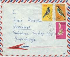 Birds On Stamps.Israel Air Mail Letter Vis Yugoslavia.postmark Motive Automobille - Oiseaux