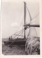 25821  Belgique -bateau Yatch -marin Femme Voilier -sans Doute Entre 1943 Et 1950 - - Bateaux