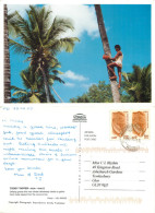 Toddy Tapper, Goa, India Postcard Posted 2008 Stamp - India