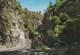 CPM  SUISSE   /  HOLLENTAL  Schwarzwald  HIRSCHSPRUNG - FR Fribourg