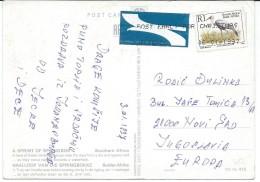 Birds On Stamps.South Africa Postcard Via Yugoslavia.postcard Motive Animals - Oiseaux