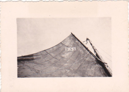 25837 Belgique -bateau Yatch -Régate à Rupelmonde -marin Femme Voilier PIKI -datée 12 Sept 1942 -Course Relais - Bateaux