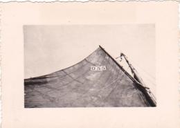 25837 Belgique -bateau Yatch -Régate à Rupelmonde -marin Femme Voilier PIKI -datée 12 Sept 1942 -Course Relais