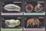 Antarctic.British Antarctic Territory.2011.Marine Life.4v.MNH.22204 - Brits Antarctisch Territorium  (BAT)