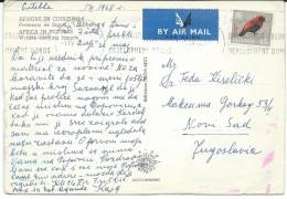 Birds On Stamps.Uganda Postcard Via Yugoslavia - Oiseaux