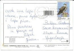 Birds On Stamps.Spain Postcard Via Yugoslavia - Oiseaux