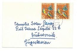 Birds On Stamps.Switzerland Letter Via Yugoslavia. - Oiseaux