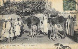 Tunisie - Scènes Et Types - Une Halte - Carte LL N° 6112 - Tunisia