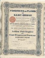 Fonderies De Plomb De SAINT-BRIEUC/ Action Privilégiée De 100 Francs Au Porteur/Côtes Du Nord/1926  ACT115 - Industrie