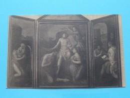 Drieluik M. Coxle Toegeschreven / Zout-Leeuw / Léau (  Ch. Peeters ) Anno 19?? ( Zie Foto Voor Details ) - Zoutleeuw