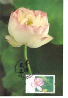 19F : Hong Kong 2008 Carte Maximum Card, Lotus Flower Maxi Card, MC - 1997-... Chinese Admnistrative Region