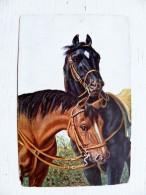 Old Post Card Animals Horses T.s.n. Serie 1772 - Pferde