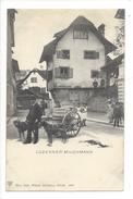 15673 - Luzerner Milchmann Attelage De Chiens - LU Lucerne