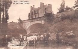 ¤¤  -  6181   -   GOUAREC   -   Le Bain Des Vaches   -  Hôtel Du Blavet   -  ¤¤ - Gouarec