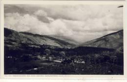BAILADORES - Vejetacion En Los Andes , Photo Pc - Venezuela