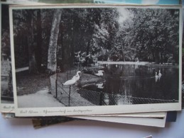 Wo ? Deutschland ? Garten - Postkaarten