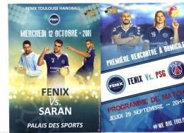 Programme Match Hanball Toulouse Paris Saint Germain - Handball