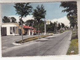 1 - ALBAN - Route De St Sernin Et Station B.P. - Alban