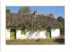 Vendee (85) Une Bourrine - Bourine - France