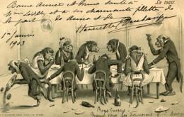 SINGE(CARTE GAUFREE) - Scimmie