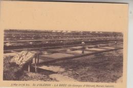 17 - ÎLE D´OLÉRON - La Mer à LA BRÉE, Marais Salants - Ile D'Oléron