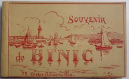 Souvenir De BINIC - Carnet Complet 12 Cartes Détachables - Binic