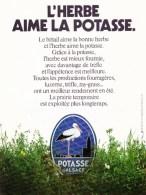 PUB  SUR  LA  POTASSE  D' ALSACE - Advertising