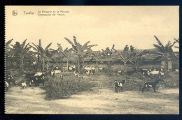 Cpa Congo Belge Tumba , La Bergerie De La Mission    JIP20 - Congo Belge - Autres
