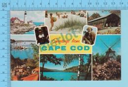 Greetings From - Cape Cod  , Multiview - USA - 2 Scans - Souvenir De...