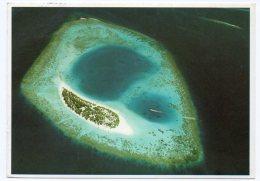 MALDIVES - NACATCHA (PHOTO MICHAEL FRIEDEL No 23/63) / THEMATIC STAMP-FLOWERS / ROSE - Maldive
