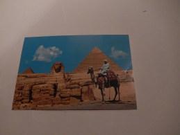 Egypte  Giza  Le Sphinx Avec Les Pyramides De Chéphren Et Mykerinos ( Bedoin A Dos De Chameau ) - Egitto