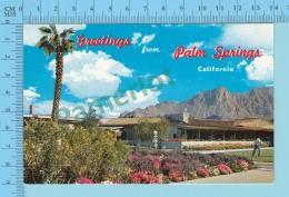 Greetings From - Palm Spring  - California - USA - 2 Scans - Souvenir De...