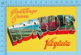 Greetings From - Norfolk, Multiview In Letters  - Virginia USA - 2 Scans - Souvenir De...