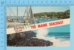 Greetings From   -The Main Seacoat  , Multiview - Maine USA - 2 Scans - Souvenir De...