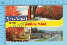 Greetings From   -Bangor, Multiview -Maine USA - 2 Scans - Souvenir De...