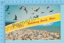 Greetings From - Salisbury Beach , Multiview   - Massachusetts USA - 2 Scans - Souvenir De...