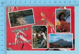Souvenir De - La  Martinique  , Multiview   -Martinique - 2 Scans - Souvenir De...