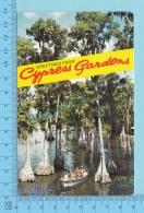 Greetings From - Cypress Gardens, Multiview - Florida USA - 2 Scans - Souvenir De...