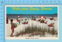 Hello From - Sunny Florida Colorful Beaches - Florida  USA - 2 Scans - Souvenir De...