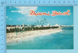 Hello From - Miami Beach  -  Florida USA - 2 Scans - Souvenir De...