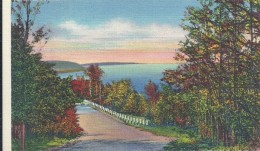ETATS UNIS - UNITED STATES OF AMERICA - WISCONSIN - View From Skyline Trail At West Peninsula State Park Door County - Etats-Unis
